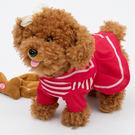 兒童電動牽繩狗會走路小狗會唱歌毛絨玩具