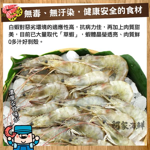 生凍南美白蝦(1.1kg±10%)約40~50 尾 為您嚴選有品質的海鮮 鮮凍 肥美 川燙 紅燒 熱炒 鍋物
