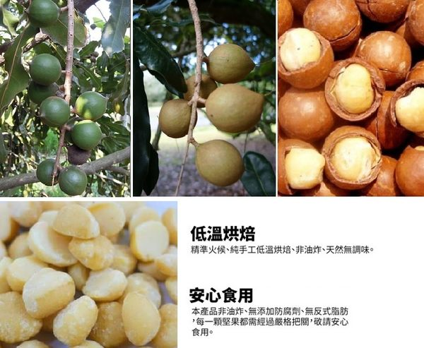 原味夏威夷豆/90g