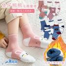 小兔毛圈 熊熊毛圈 單入不挑色 加厚加絨中筒襪 加厚刷絨襪 加厚 毛圈 彈性中筒襪