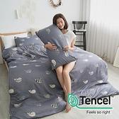 [小日常寢居]#HT036#絲柔親膚奧地利TENCEL天絲5尺雙人床包被套四件組(含枕套)台灣製/萊賽爾Lyocell