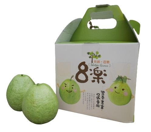【鮮食優多】森芭樂園 芭樂郭爸爸-珍珠芭樂(5斤/盒)