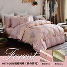 【班尼斯名床】【百貨專櫃級5尺雙人床包枕...