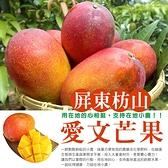 爆甜枋山愛文芒果(5台斤/9~12顆)