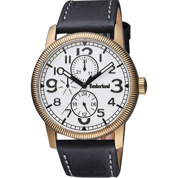 Timberland Erving 輝煌時代復刻日曆腕錶-銀x古銅金/44mm TBL.14812JSK/01