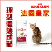 *WANG*法國皇家F32理想體態成貓飼料 4公斤
