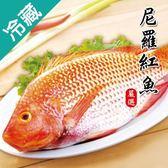 【台灣嚴選】尼羅紅魚1尾(500~600g/尾)【愛買冷藏】