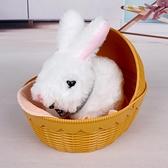 玩具小兔子毛絨電子兒童過家家寵物電動女孩【雲木雜貨】
