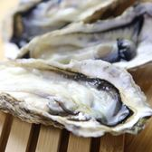 Camaron 卡馬龍 嚴選 日本 冷凍 全殼 生蠔 1 kg 約7~10顆 單包