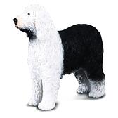 【永曄】collectA 柯雷塔A-英國高擬真動物模型-家庭動物-英國牧羊犬 R88066