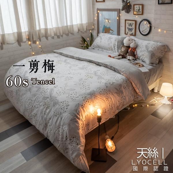 天絲(60支) 枕頭套一入 專櫃級 多款可選 100%天絲 棉床本舖