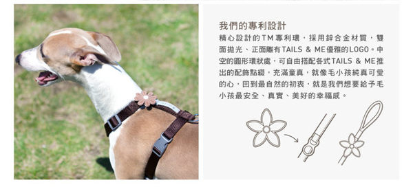 *WANG*台灣製TAILS&ME 尾巴與我《經典系列胸背帶》M號賣場