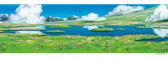 【拼圖總動員 PUZZLE STORY】祕密花園 日本進口拼圖/Ensky/霍爾的移動城堡/352P/橫幅