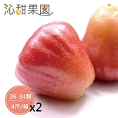 沁甜果園SSN.黑珍珠蓮霧(26-34顆,4斤/箱)(共二箱)﹍愛食網