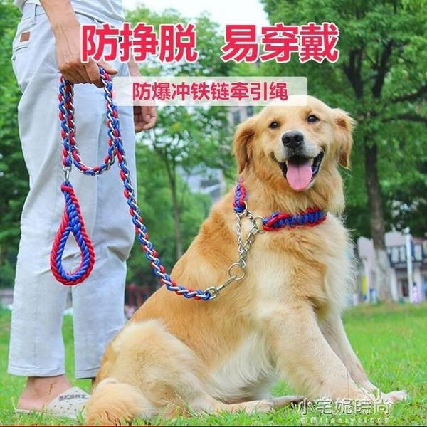 防咬狗錬子鐵錬中型大型犬狗狗牽引繩金毛拉布拉多遛狗繩P錬項圈『艾莎』