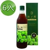 【南紡購物中心】【台糖】梅子醋(600ml/瓶)6瓶