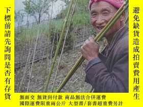 二手書博民逛書店Biting罕見The Bamboo — Promoting the spirit of community wn