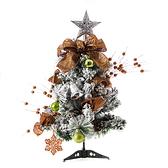 2尺絢麗暖陽聖誕樹組