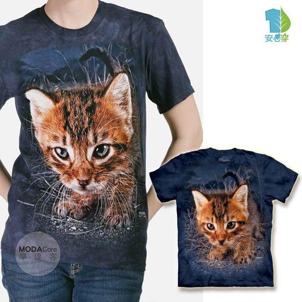 【摩達客】(預購)美國進口 The Mountain 伺機飛撲小貓 純棉環保短袖T恤(YTM104175789171)