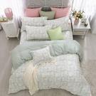 鴻宇 雙人加大床包兩用被套組 天絲300織 甜園花語 台灣製 T20126