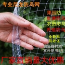 果園防鳥網葡萄櫻桃網大棚果樹防鳥用的網魚塘泥鰍養殖尼龍天網 快速出貨