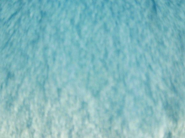 【震撼精品百貨】となりのトトロTotoro_龍貓/豆豆龍~造型抱枕-龍貓藍