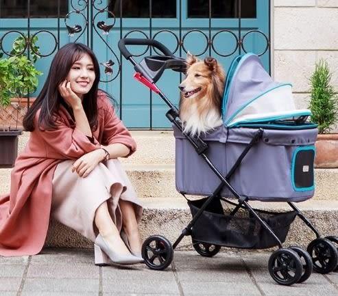 [寵樂子]《IBIYAYA依比呀呀》小資國民寵物推車 FS1617 (2色)