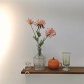 玻璃花瓶簡約透明浮雕房間插花擺件干花裝飾瓶【聚寶屋】