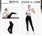 澳洲YPL 2020年AI小狗褲 智能光感塑型 機能褲 壓力褲 塑身褲