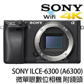 SONY a6300 附 SIGMA MC-11 + 18-300mm C 贈原電+琺瑯杯 (24期0利率 免運 公司貨) E-mount 微單眼 支援4K