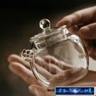 茶壺 玻璃小壺小巨輪養生泡茶壺耐熱玻璃帶蓋壺 完美計畫