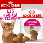 【培菓平價寵物網】FHN 新皇家飼料《E35挑嘴成貓絕佳口感配方》4KG