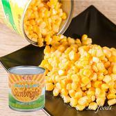 陽光農場-玉米粒