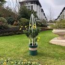 花架 爬藤架花架園藝支架植物攀爬架室內外月季鐵線蓮花架藤本支柱