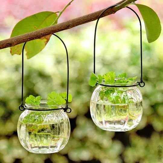 創意懸掛透明玻璃水培花瓶 居家裝飾瓶 小吊瓶 幼兒園酒店裝飾瓶JRM-1705