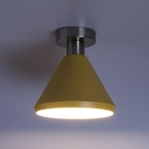 (組)特力屋萊特霧銀吸頂壁燈黃金屬燈罩