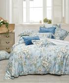 【WENTEX】Blue Galaxy 天絲™加大四件式床包組
