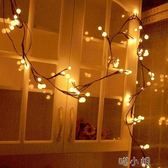 圓球裝飾燈藤條燈2.5米72燈聖誕節店鋪婚慶裝飾彩燈閃燈掛燈  喵小姐