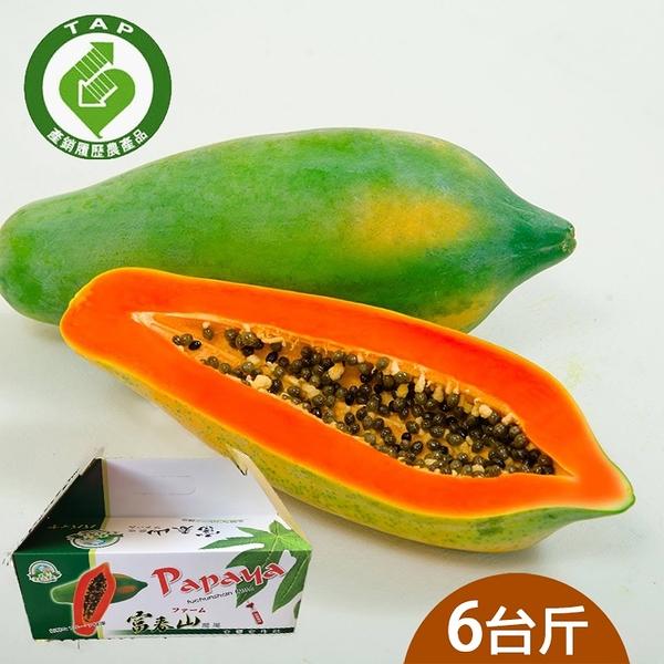 【履歷達人】台農2號木瓜6台斤含運組(富春山農場)