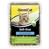 【寵物王國】德國竣寶GimCat-香味軟貓草(盒裝)100g
