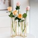 花瓶北歐金色玻璃試管花瓶辦公室桌面創意裝飾插花綠蘿水培小擺件YYS 快速出貨