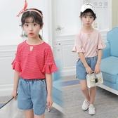 女童裝童裝兒童荷葉袖條紋T恤牛仔褲短褲套裝兩件套 俏女孩