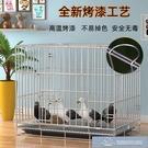 鳥籠 籠養殖籠配對籠大號繁殖籠鳥籠家用清倉 微愛家居生活館