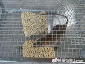 捕鼠器 大號老鼠籠家用全自動連續抓鼠撲鼠滅鼠神器逮捉抓耗子工具 igo檸檬衣捨