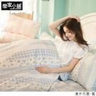 床包 / 單人-【漫步花園藍】含一件枕套,雪紡紗磨毛多工法處理,戀家小舖台灣製S01-AAF101