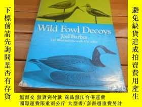 二手書博民逛書店Wild罕見Fowl Decoys , 140 Illustra
