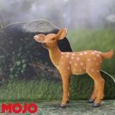 【Mojo Fun 動物星球頻道 獨家授權】 白尾幼鹿 387036