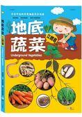 地底蔬菜立體書
