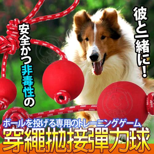 【 zoo寵物商城】dyy》安全耐咬拋穿繩彈力球玩具L號直徑7.5cm