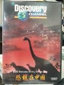 挖寶二手片-P17-072-正版VCD-其他【恐龍在中國】-Discovery科技類(直購價)